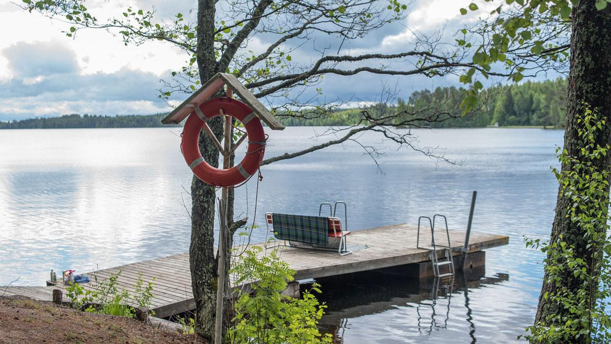 How to find the best ladder for your dock